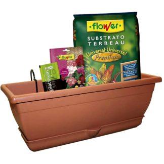 Pack de jardinería para geranios FLOWER