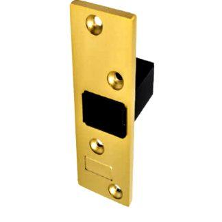 Cerrador para embutir la cerradura de seguridad int-LOCK de AYR a puertas empotradas, protección latón mate