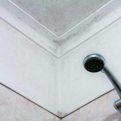 aguastop membrana antihumedades por filtraciones aguastop interior